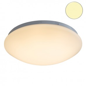 LED Decken-/ Wandleuchte 16W, warmweiss-35343