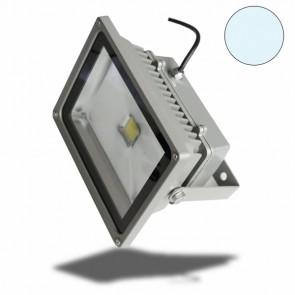 PROFI LED Fluter 50 Watt, kaltweiß, IP65, 50W-32351